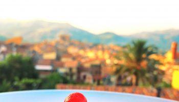 cassatina siciliana